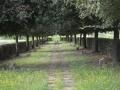 Il Giardino della meditazione