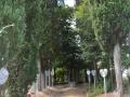 Parco della Rimembranza a Massarella (Fucecchio)
